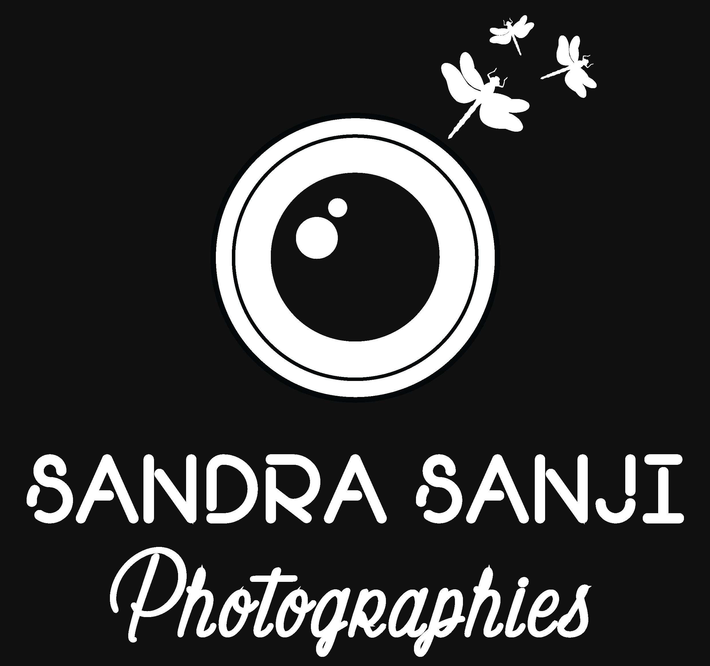 Photographe, Illustratrice / Graphiste, Patiente Experte